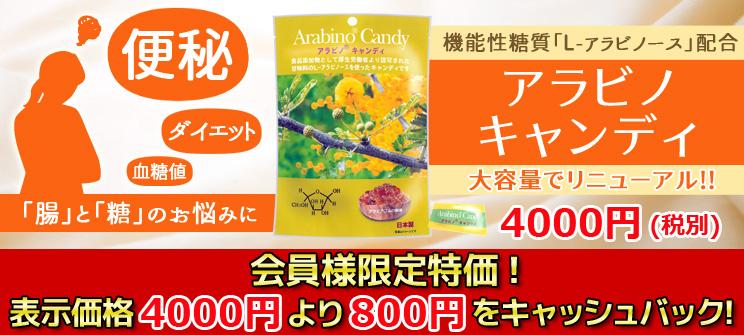 アラビノキャンディ 便秘、ダイエット、血糖値…「腸」と「糖」のお悩みに 大容量でリニューアル!! 会員様限定特価!表示価格4000円より800円をキャッシュバック!